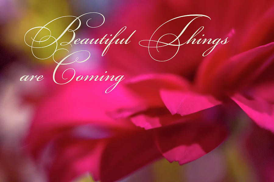 Colorful Photograph - Beautiful Things Are Coming by Marnie Patchett