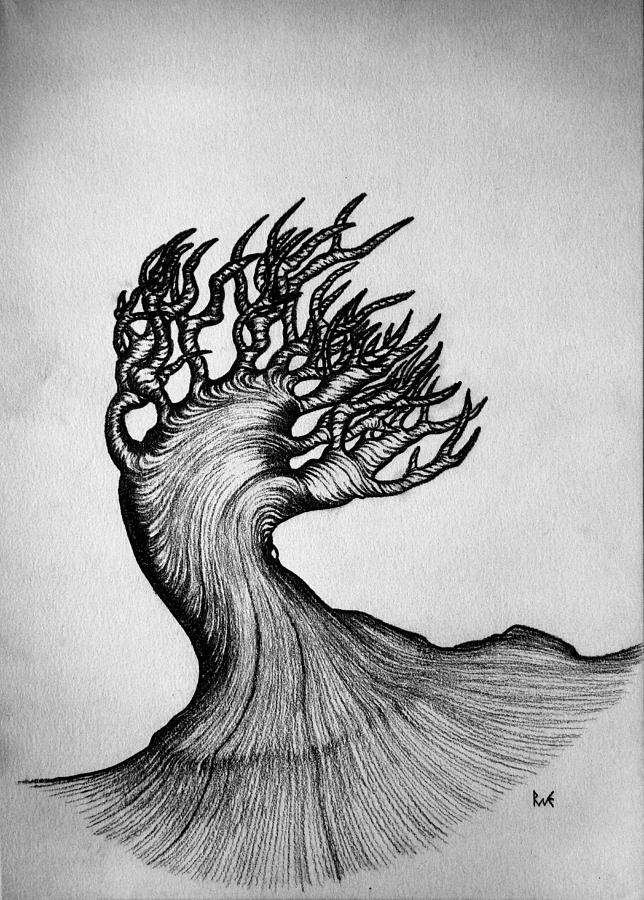 Beautiful drawing beautiful tree nature original black and white pen art by rune larsen by