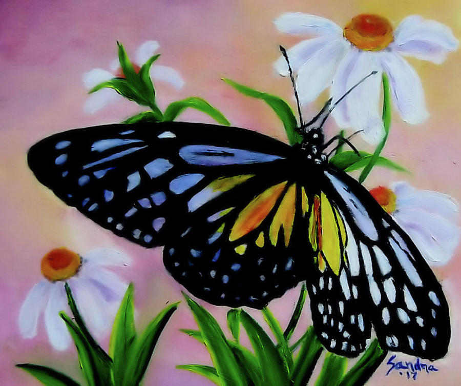 Beautiful Wings by Sandra Maddox