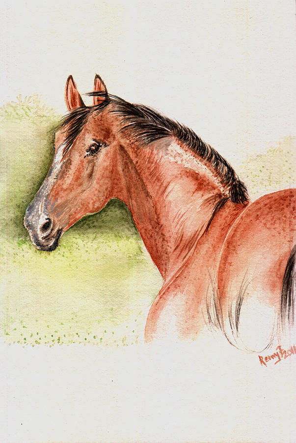 Horse Artwork Painting - Brown Horse From The Wild by Remy Francis