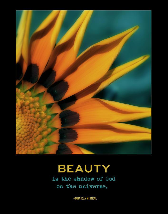 Orange Flower Photograph - Beauty by Bonnie Bruno