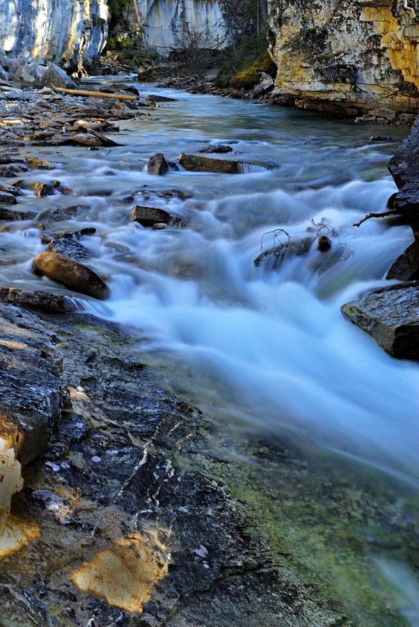 Jasper National Park Photograph - Beauty Creek by Larry Ricker