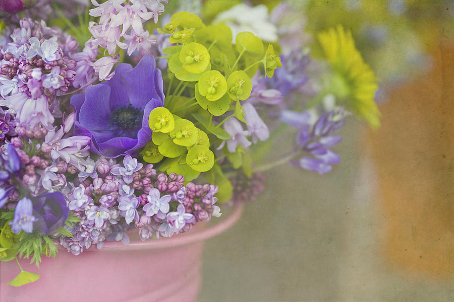 Flowers Photograph - Beauty In A Bucket by Rebecca Cozart