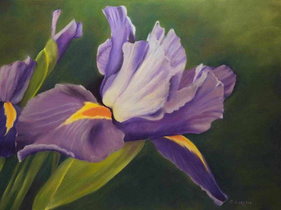 Beauty Is In the Iris by Carol Corliss