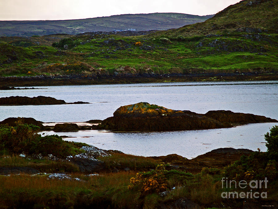 Beauty on the Rocks by Patricia Griffin Brett
