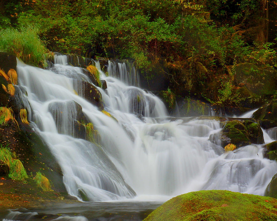 Water Photograph - Beaver Cr. Falls by Scott Gould