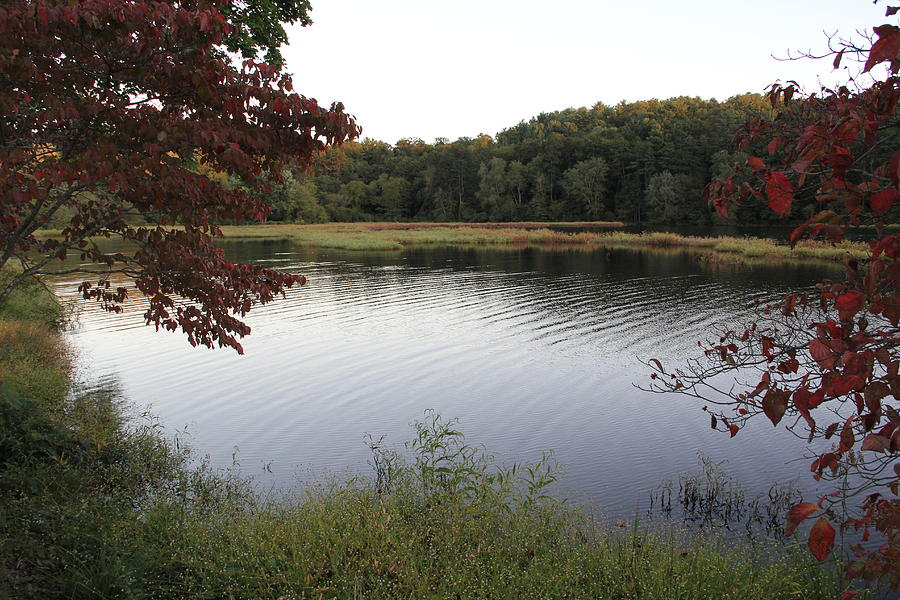 Lake Photograph - Beaver Lake With A Gentle Breeze by Allen Nice-Webb