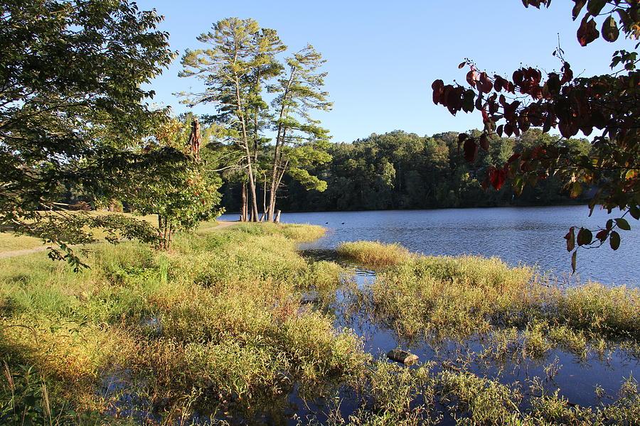 Lake Photograph - Beaver Lake Scenic View by Allen Nice-Webb
