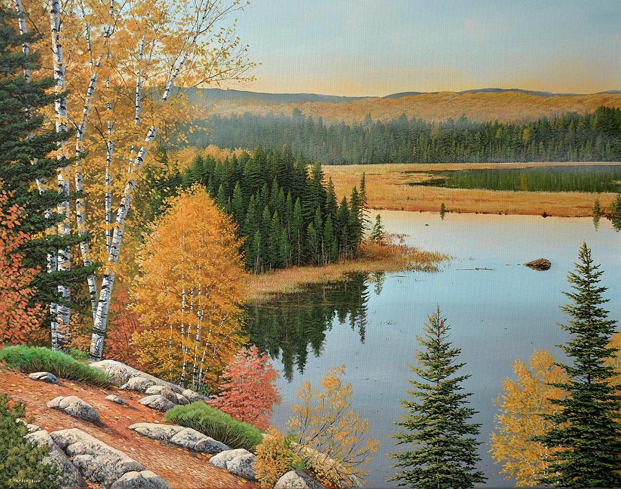 Beaver Pond Lookout by Jake Vandenbrink