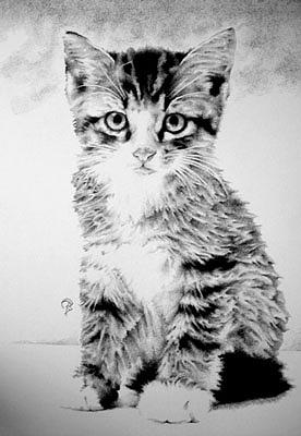 Pointillism Drawing - Bebes Orphan by Bobby Kro