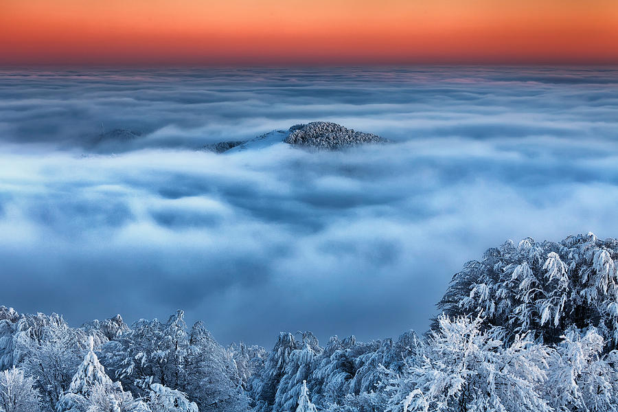 Clouds Photograph - Bed Of Clouds by Evgeni Dinev