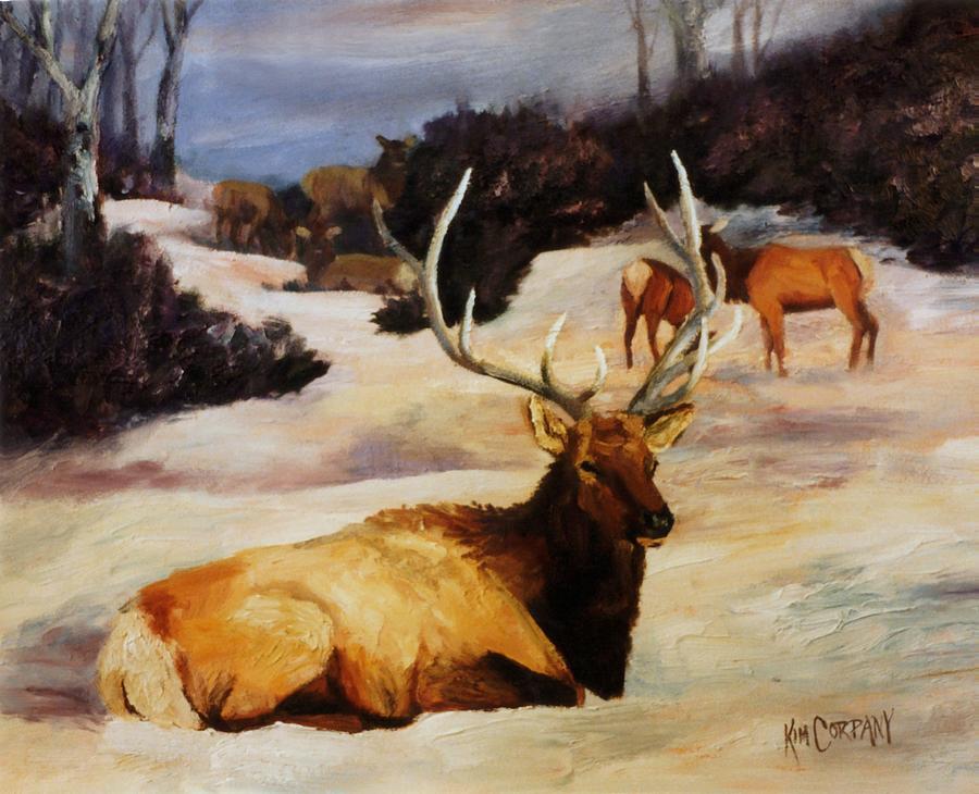 Bull Painting - Bedded Down   Bull Elk In Snow by Kim Corpany