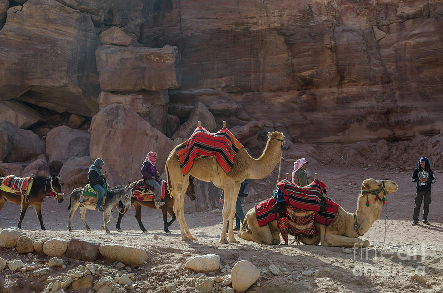 Bedouin Tribesmen, Petra Jordan by Perry Rodriguez