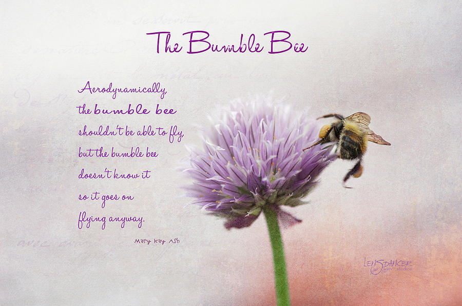 Bee Chive Talkin' by Joy Gerow