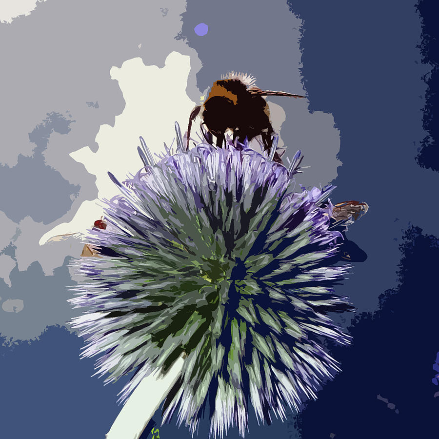 Bee Photograph - Bee On An Allium by James Hill