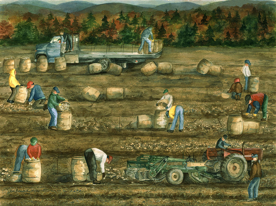Aroostook County Painting - Been There Done That In Aroostook County by Paula Robertson