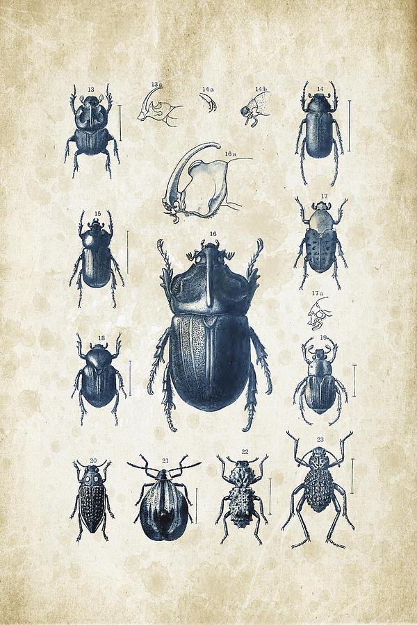 Beetle Digital Art - Beetles - 1897 - 02 by Aged Pixel