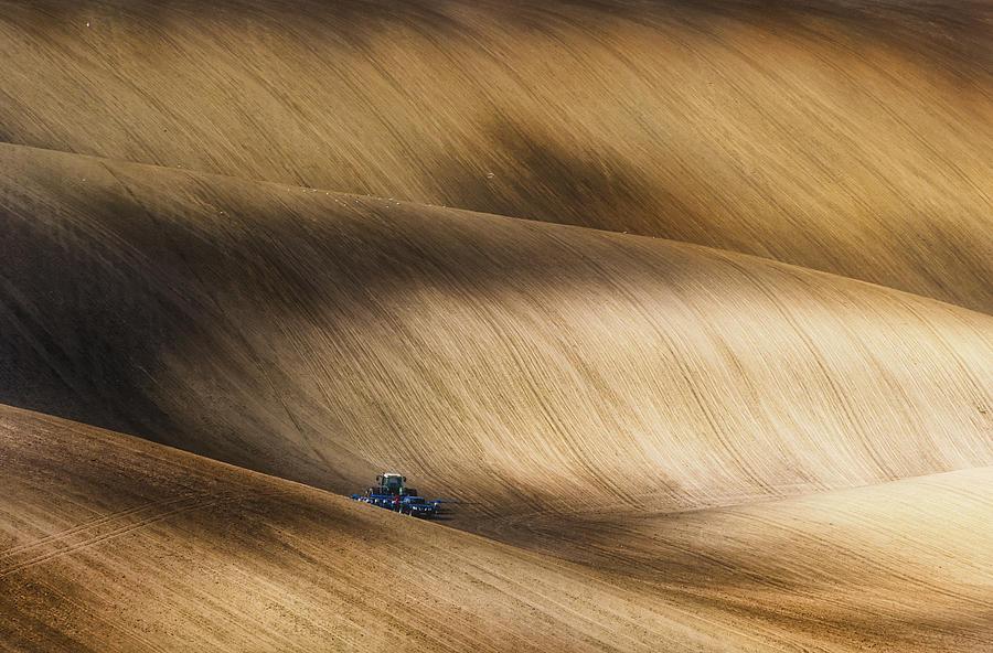 Bax Photograph - Before Seeding by Piotr Krol (bax)