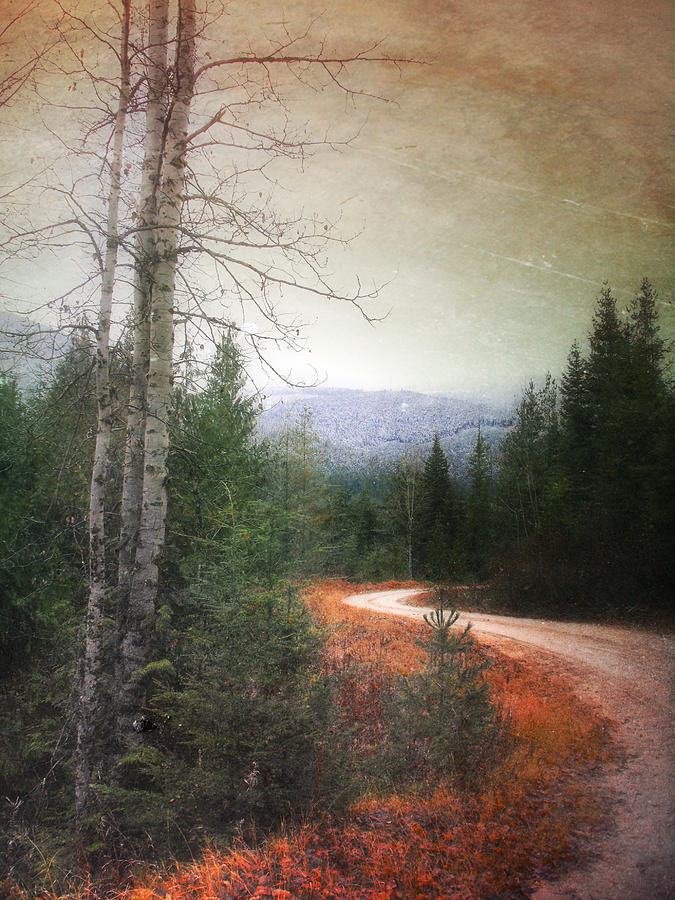Winding Photograph - Before The Snow by Tara Turner