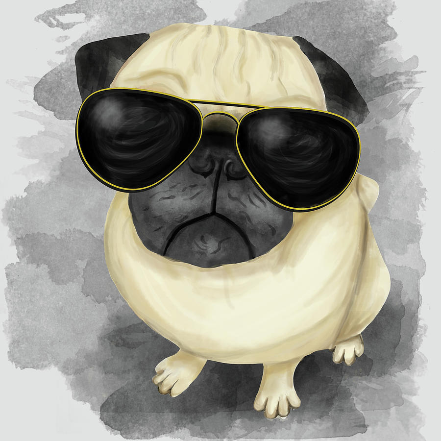 Pugs Sunglasses Reviews Southern California Weather Force