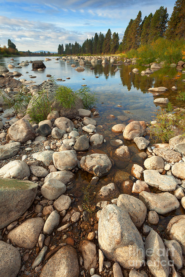 River Photograph - Beginnings by Beve Brown-Clark Photography