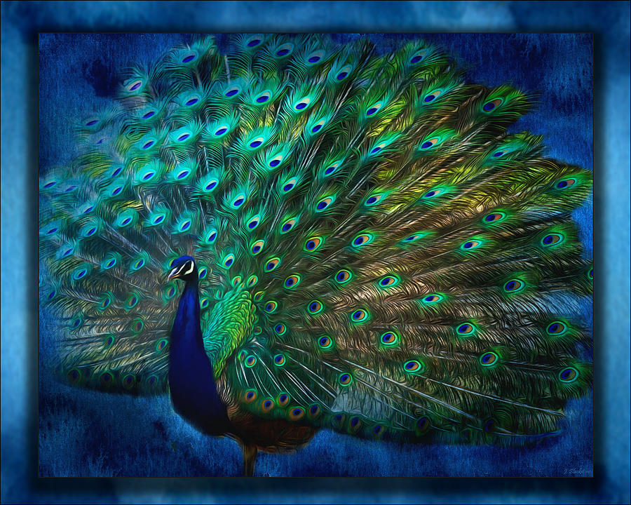 Being Yourself Peacock Art Painting By Jordan Blackstone
