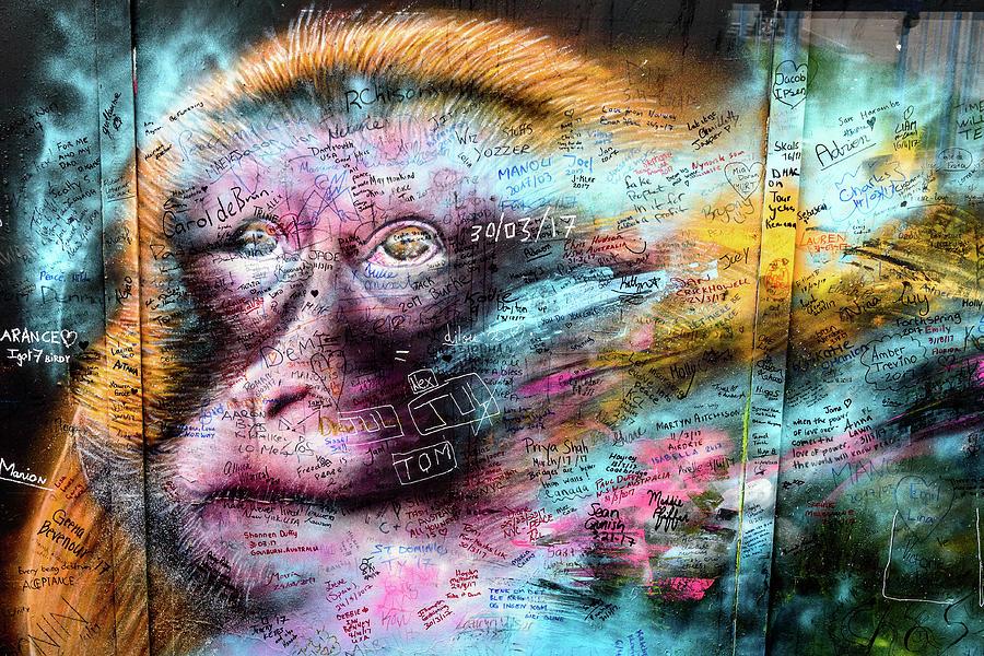 Belfast Mural - Monkey Face - Ireland Photograph by Jon Berghoff
