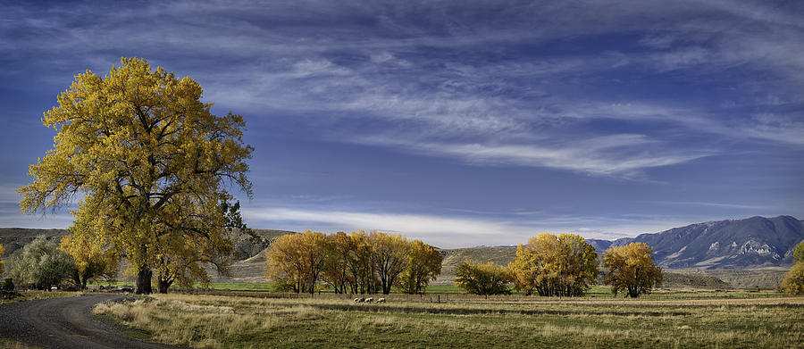 Color Prints Photograph - Belfry Fall Landscape 6 by Roger Snyder