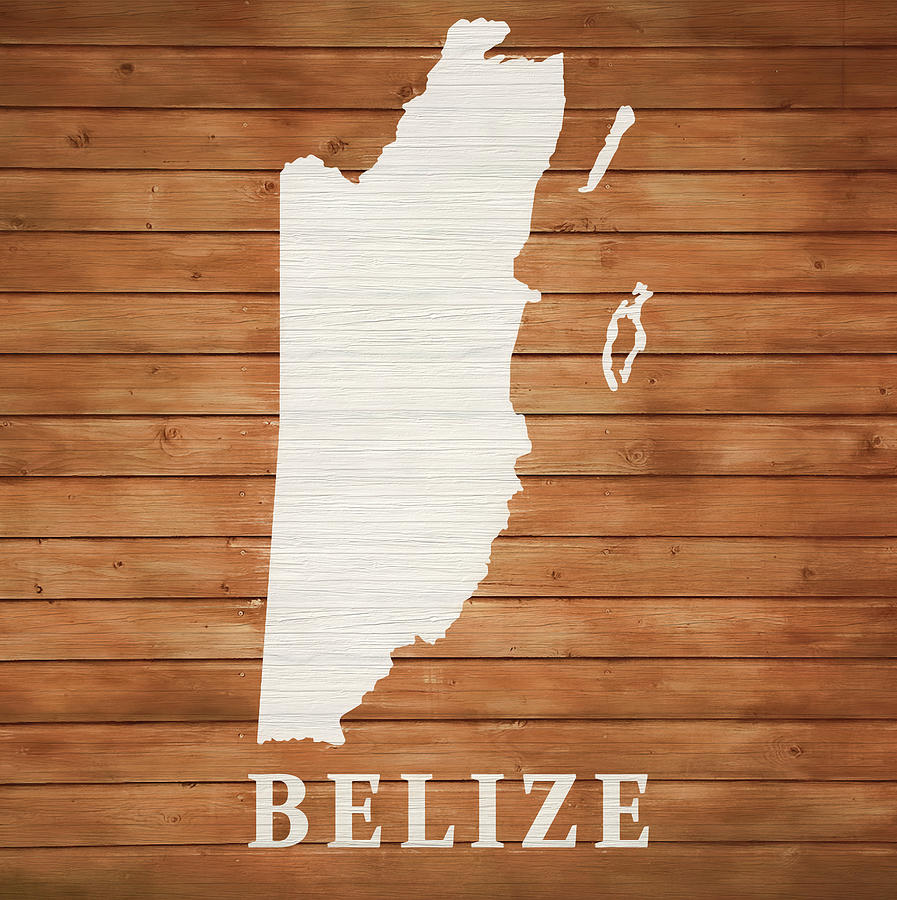 Map Mixed Media - Belize Rustic Map On Wood by Dan Sproul