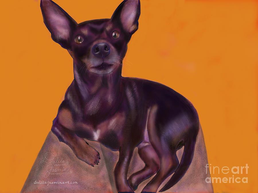Dog Digital Art - Bella by Dalila Jasmin