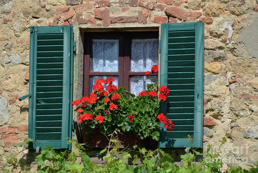Geraniums Photograph - Bella Italian Window  by Frank Stallone