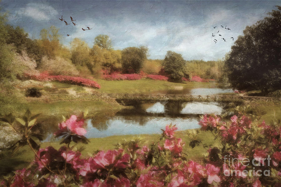 Bellingrath Digital Art - Bellingrath Gardens by Lianne Schneider