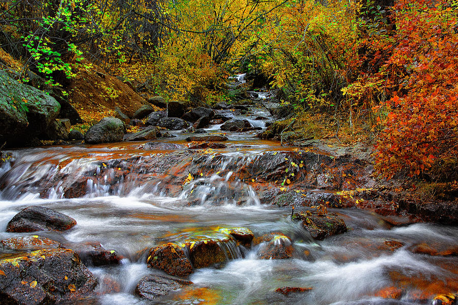 Colorado Landscape Photograph - Below The Waterfall by Tim Reaves