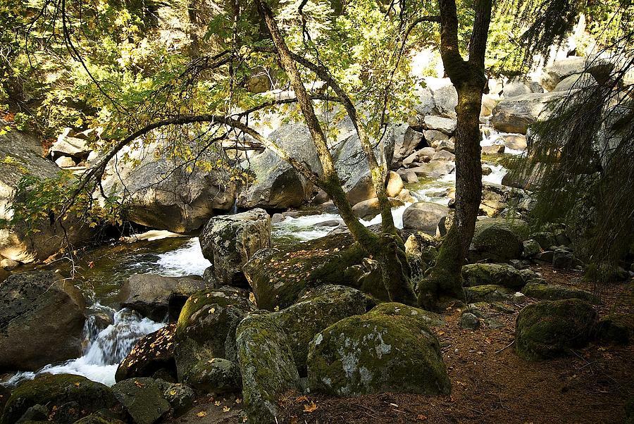 Vernal Falls Photograph - Below Vernal Falls  by Chris Brewington Photography LLC