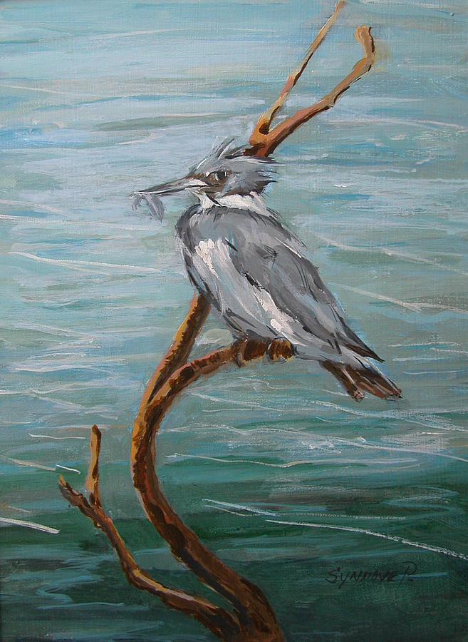 Birds Painting - Belted Kingfisher  by Synnove Pettersen