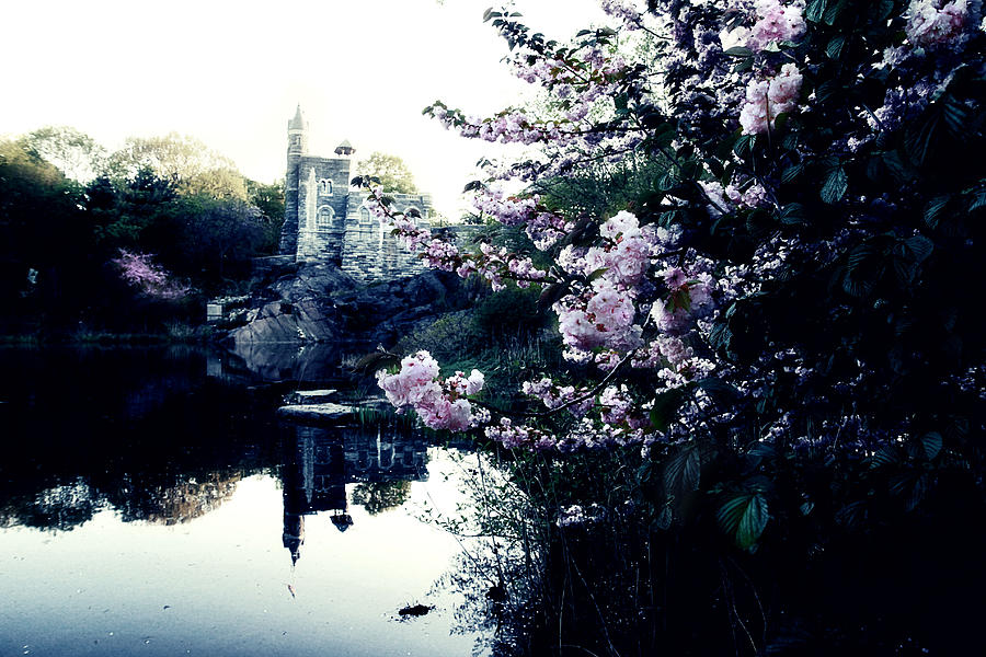 New York Photograph - Belvedere Castle by Ariane Moshayedi