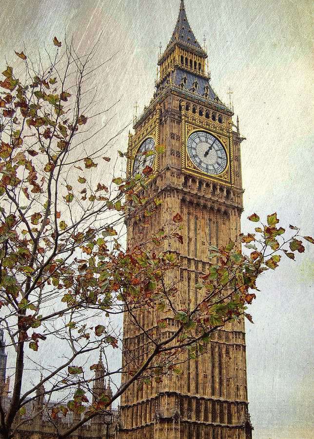 Big Photograph - Ben In Autumn by JAMART Photography