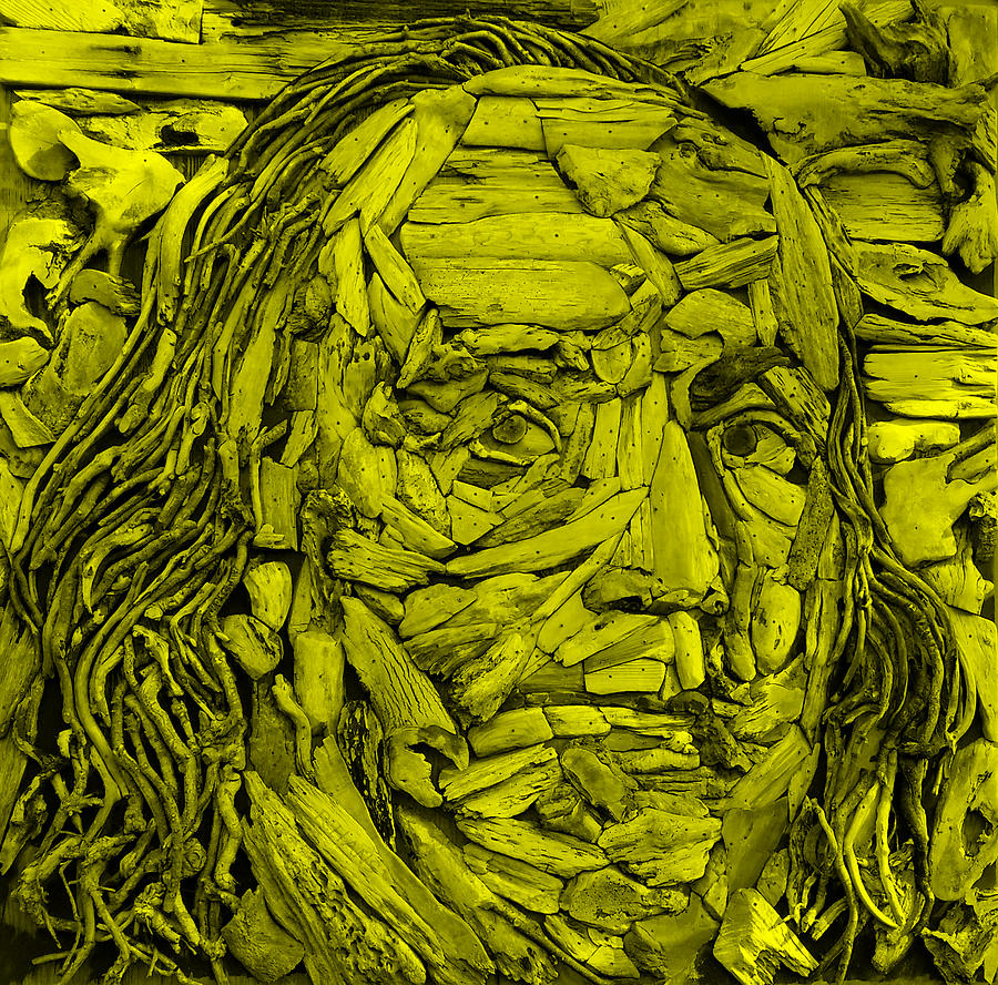Ben Franklin Photograph - Ben In Wood Yellow by Rob Hans