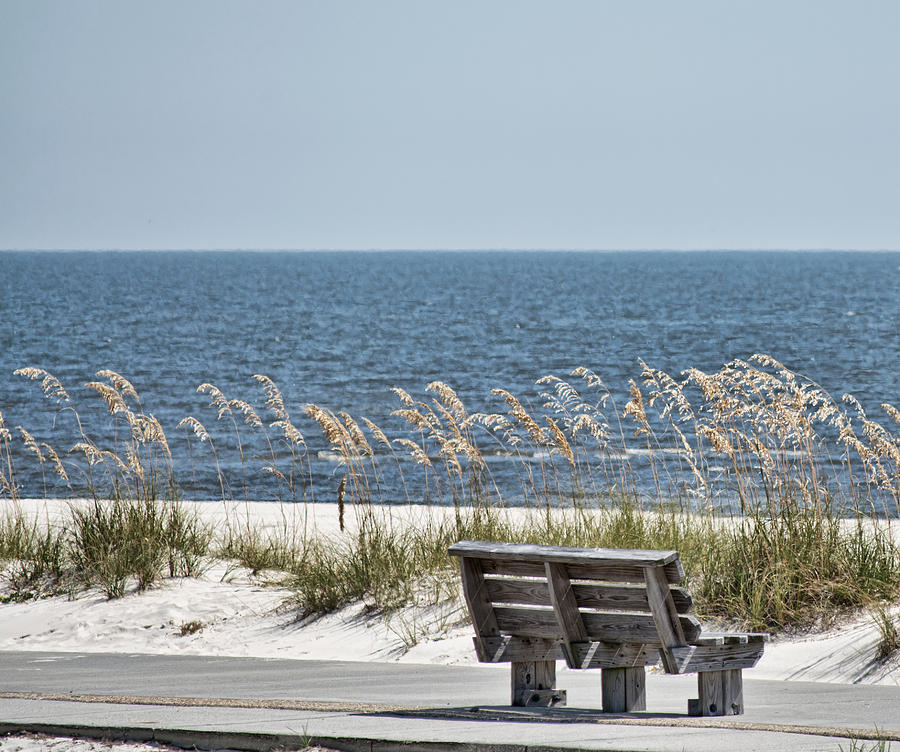 Bench at the Beach by Cathy Jourdan