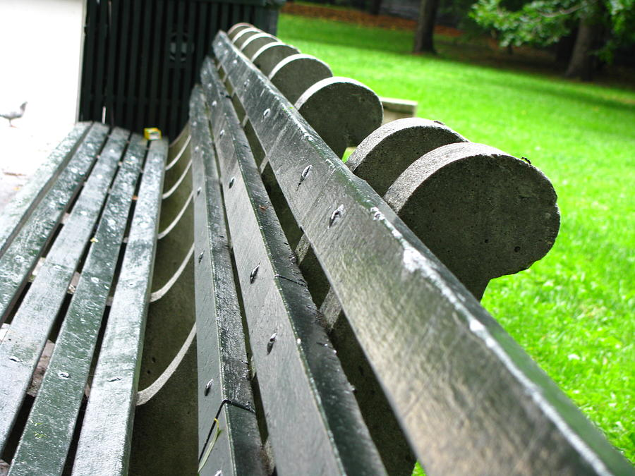 Bench Photograph - Bench In Harlem by Oksana Pelts