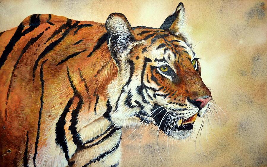 Bengal Tiger Painting - Bengal Tiger by Paul Dene Marlor