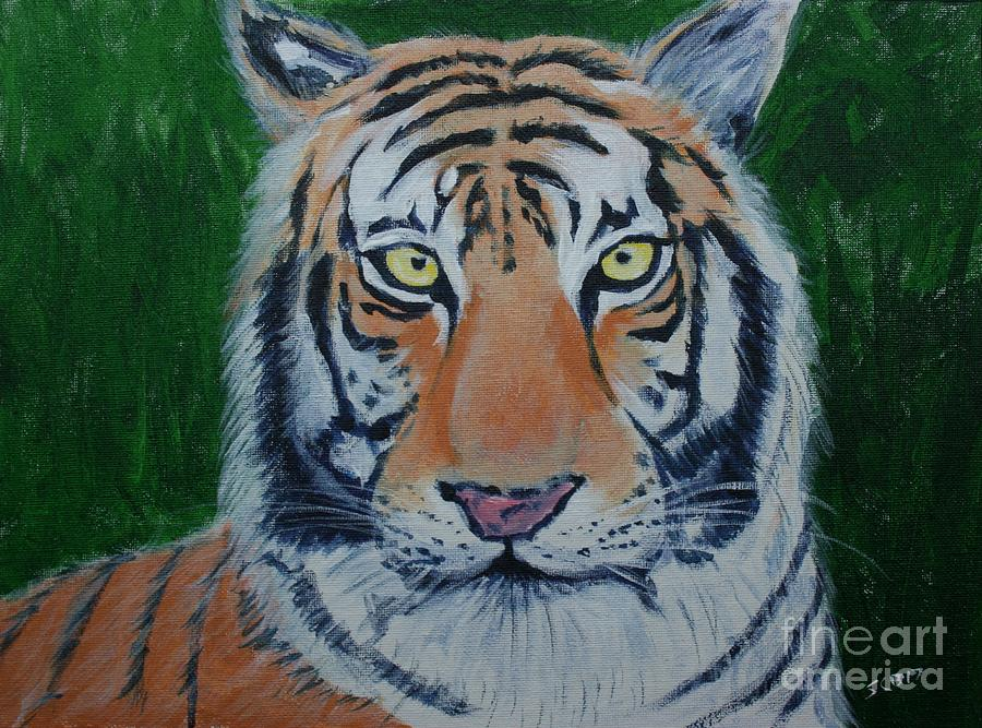 Bengal Tiger by Stacy C Bottoms