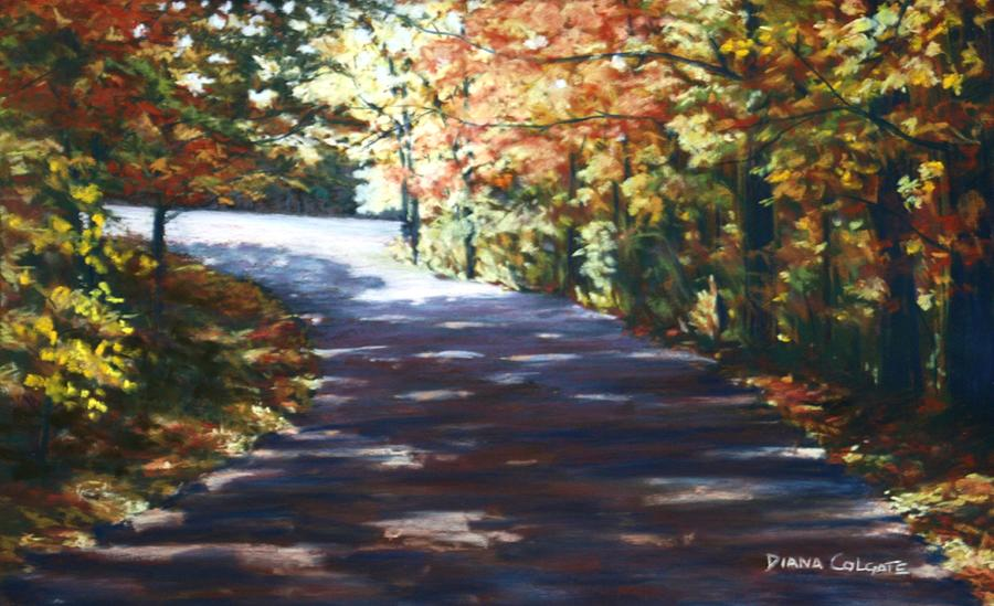 Bernheim Drive by Diana Colgate