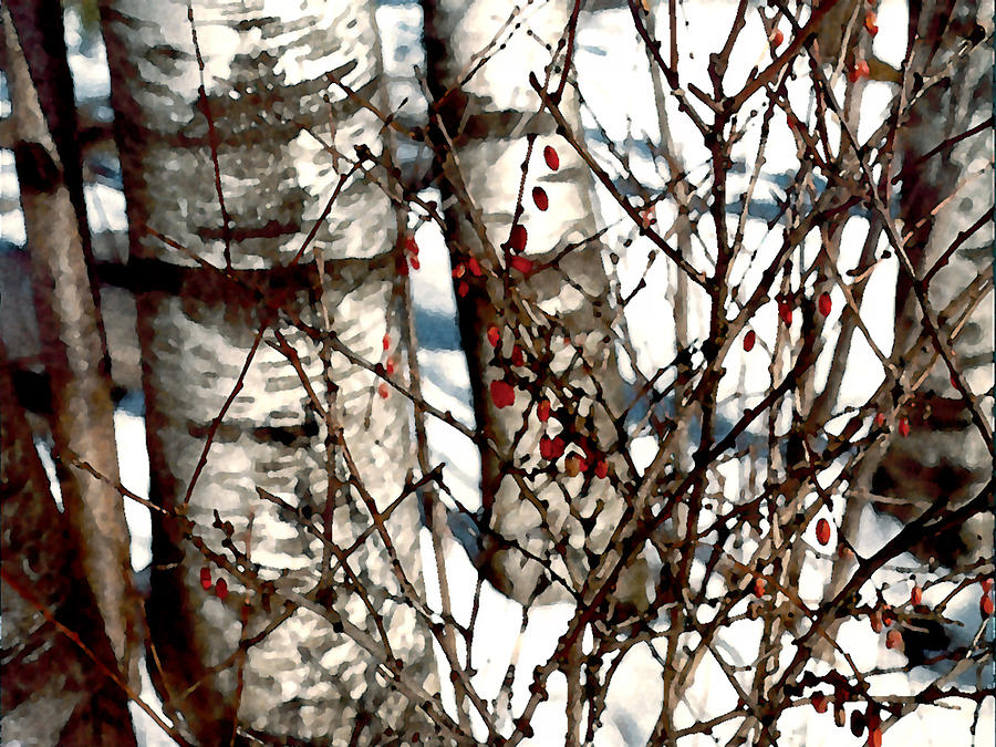 Trees Painting - Berries And Birches by Paul Sachtleben