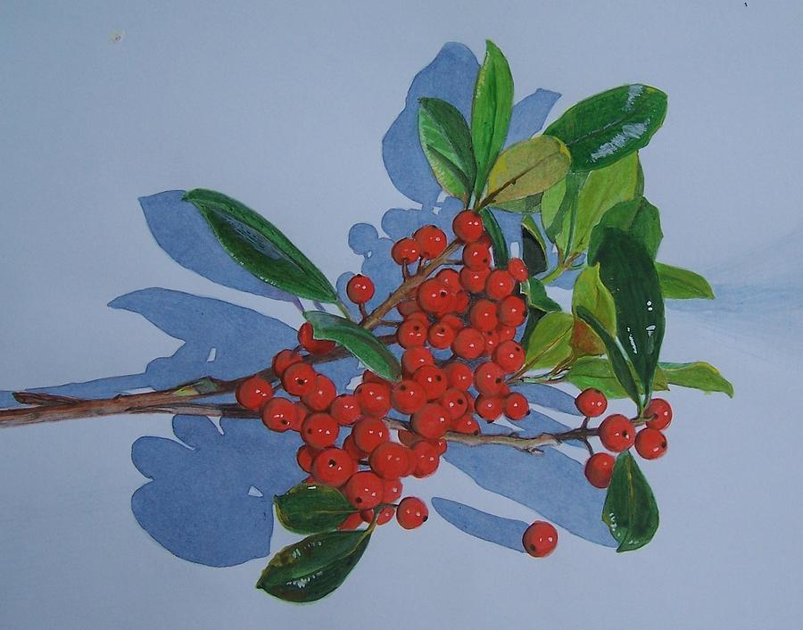 Berries Mixed Media - Berries by Constance Drescher