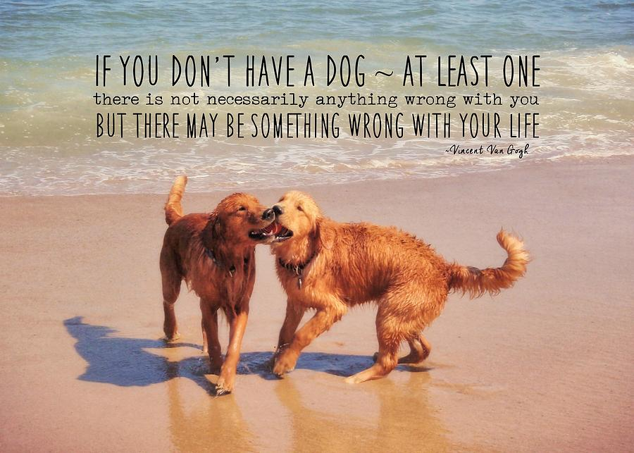 Dog Photograph - Best Buds Quote by JAMART Photography