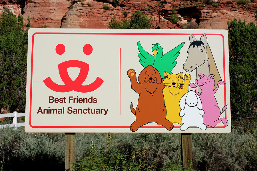Best Friends Photograph - Best Friends Animal Sanctuary Angel Canyon Knob Utah Signage 03 by Thomas Woolworth