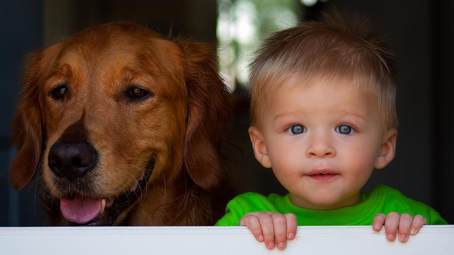 Child Photograph - Best Friends by Matt Dobson