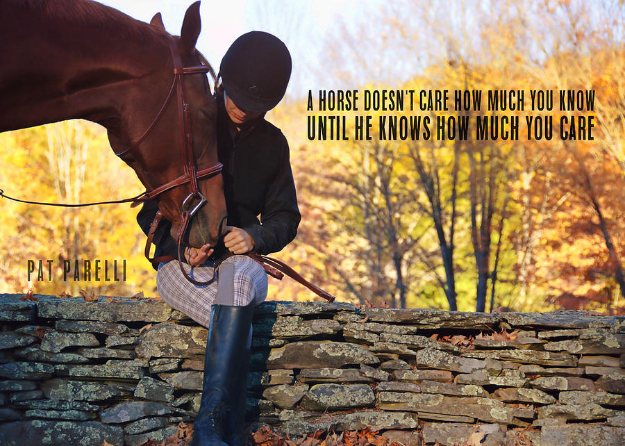 Horse Photograph - Best Friends Quote by JAMART Photography