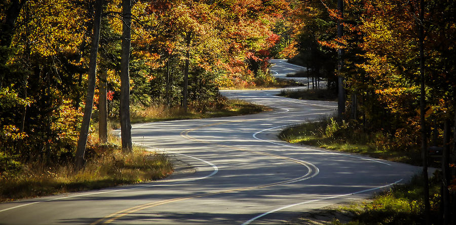 Best Road Ever by Terry Ann Morris